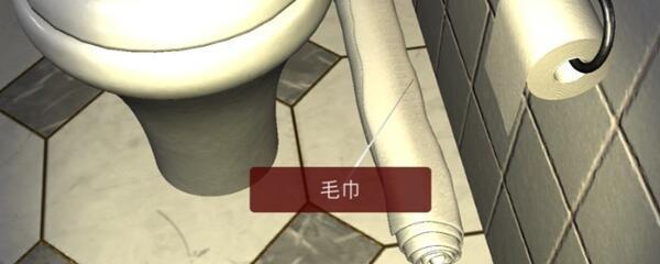 《孙美琪疑案-袁家宾馆》五级线索——毛巾