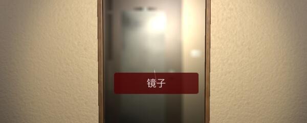 《孙美琪疑案-袁家宾馆》五级线索——镜子