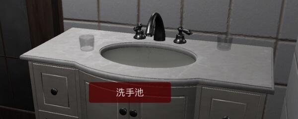 《孙美琪疑案-袁家宾馆》五级线索——洗手池