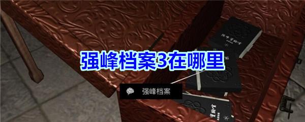 《孙美琪疑案-宋明朝》四级线索——强峰档案3
