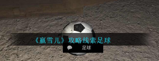 《孙美琪疑案-嬴雪儿》五级线索——足球