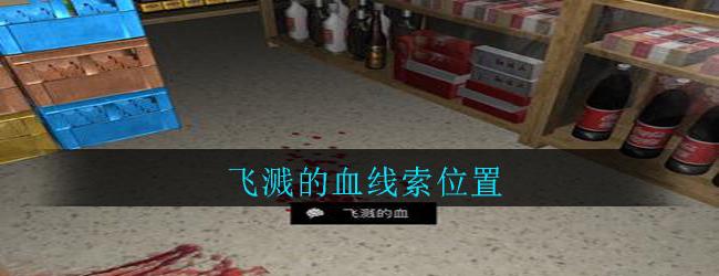 《孙美琪疑案:郎威》五级线索——飞溅的血