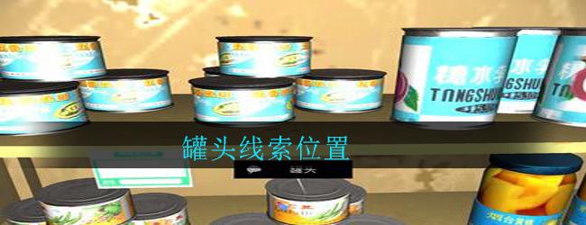 《孙美琪疑案:郎威》五级线索——罐头