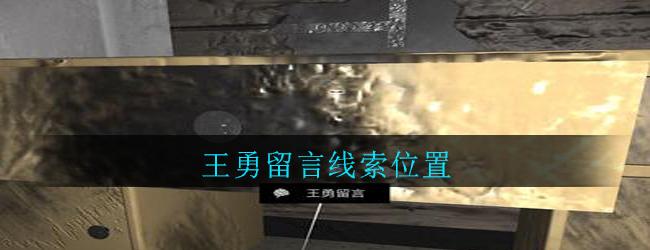 《孙美琪疑案:郎威》五级线索——王勇留言