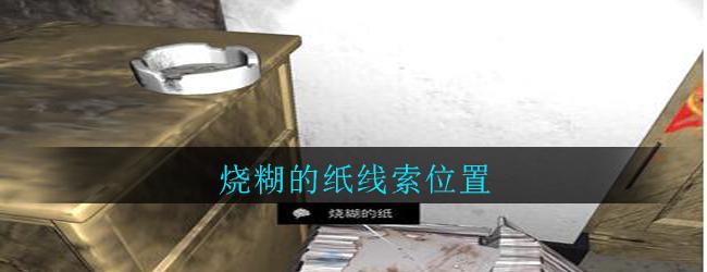 《孙美琪疑案:郎威》五级线索——烧糊的纸