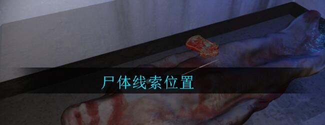《孙美琪疑案:郎威》五级线索——尸体