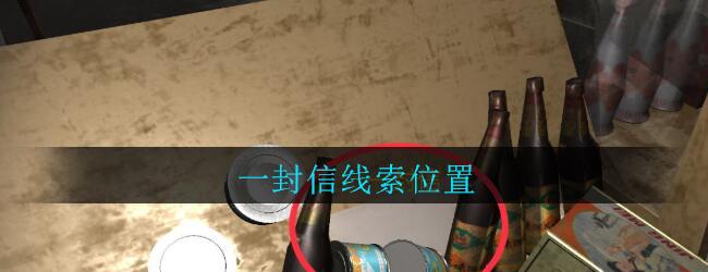 《孙美琪疑案:郎威》四级线索——一封信