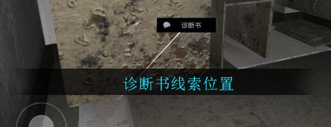 《孙美琪疑案:郎威》四级线索——诊断书