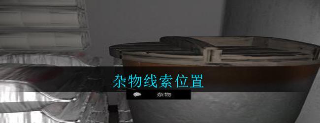 《孙美琪疑案:郎威》四级线索——杂物