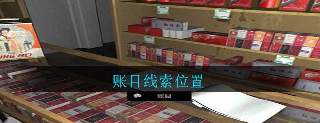 《孙美琪疑案:郎威》四级线索——账目