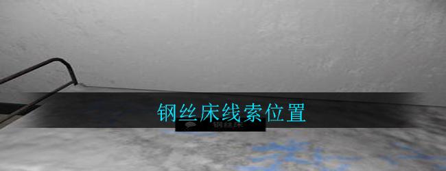 《孙美琪疑案:郎威》四级线索——钢丝床