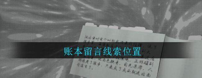 《孙美琪疑案:郎威》四级线索——账本留言