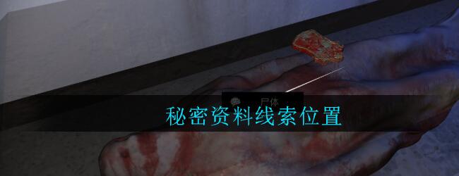 《孙美琪疑案:郎威》三级线索——秘密资料1