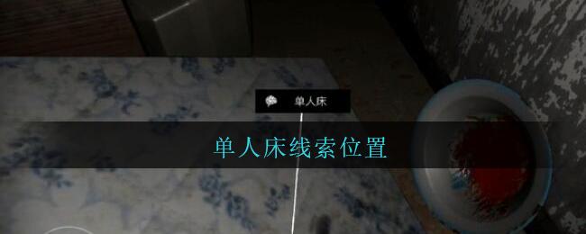 《孙美琪疑案:王勇》五级线索——单人床
