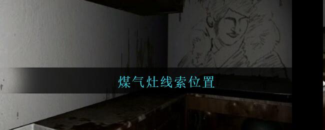 《孙美琪疑案:王勇》五级线索——煤气灶