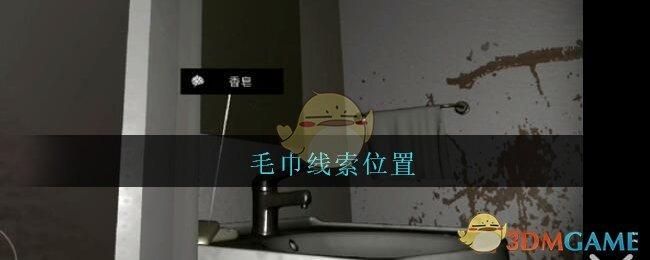 《孙美琪疑案:王勇》四级线索——毛巾