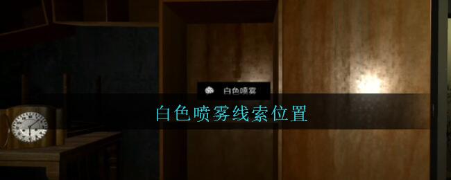 《孙美琪疑案:王勇》四级线索——白色喷雾