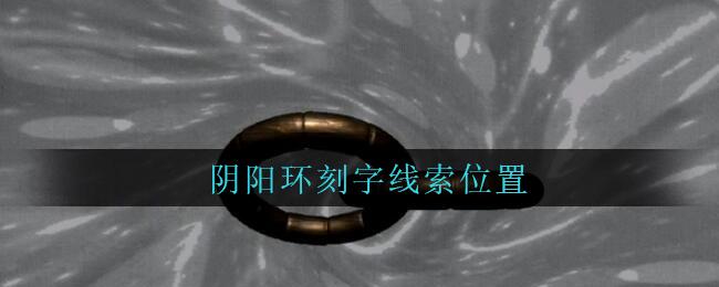 《孙美琪疑案:王勇》五级线索——阴阳环刻字