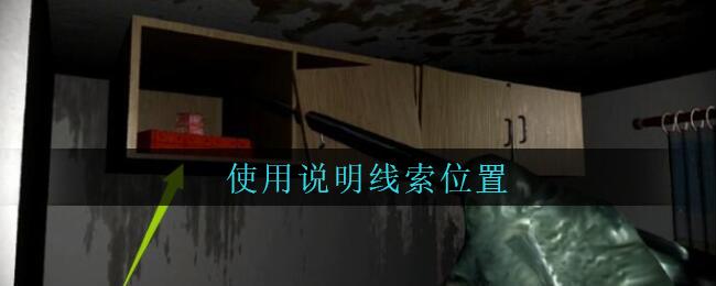 《孙美琪疑案:王勇》五级线索——使用说明