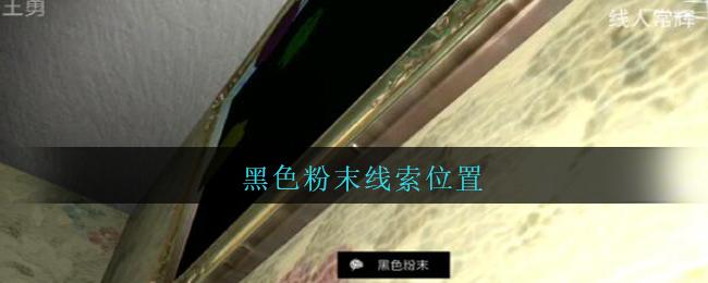 《孙美琪疑案:王勇》三级线索——黑色粉末