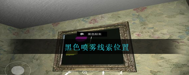 《孙美琪疑案:王勇》二级线索——黑色喷雾
