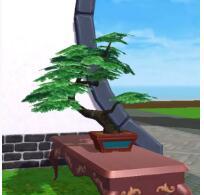 《创造与魔法》松梅樱盆栽获取方法