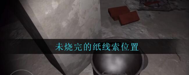 《孙美琪疑案:兰芝》五级线索——未烧完的纸