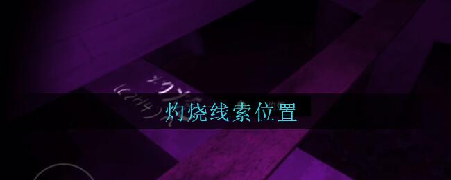《孙美琪疑案:兰芝》五级线索——灼烧