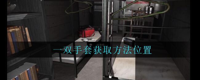 《孙美琪疑案:兰芝》三级线索——一双手套