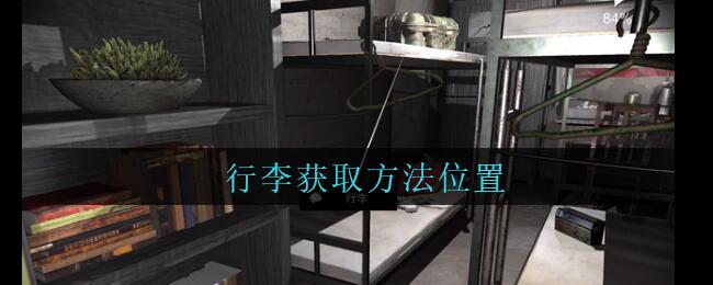 《孙美琪疑案:兰芝》三级线索——行李
