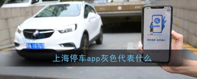 《上海停车》灰色标识含义介绍