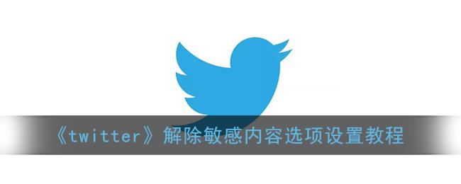 《twitter》解除敏感内容选项设置教程