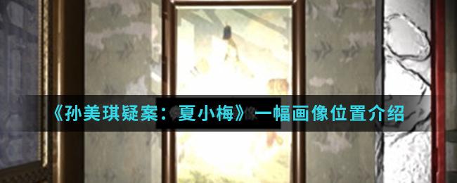 《孙美琪疑案:夏小梅》一幅画像位置介绍