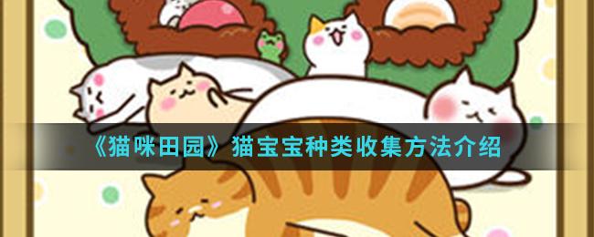 《猫咪田园》猫宝宝种类收集方法介绍