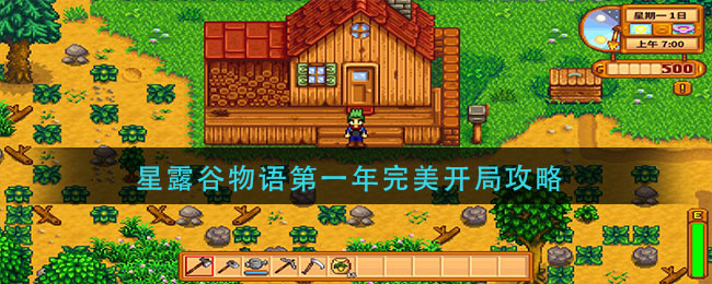 星露谷物语第一年完美开局攻略
