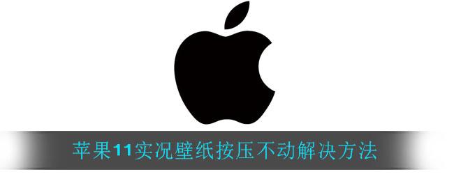 苹果11实况壁纸按压不动解决方法