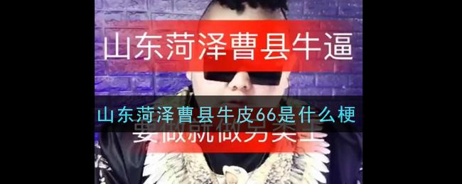 山东菏泽曹县牛皮66是什么梗