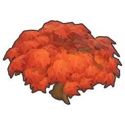 《摩尔庄园手游》枫树种子成熟时间介绍