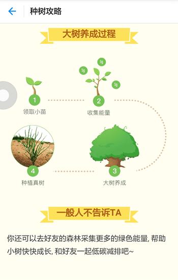 《支付宝》蚂蚁森林的具体玩法技巧解析